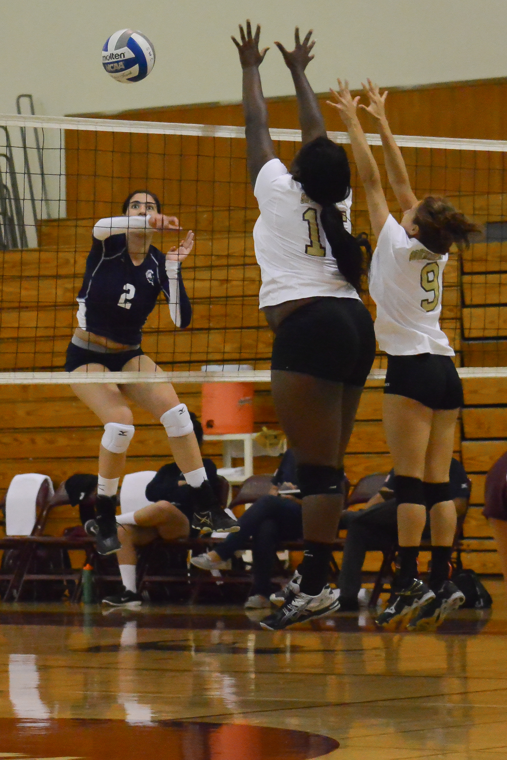 Volleyball block lied